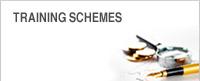 Training Schemes